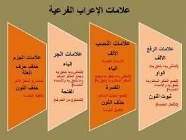 Photo of علامات الإعراب الفرعية سبعة، تعرف متى نستخدم كل علامة منها