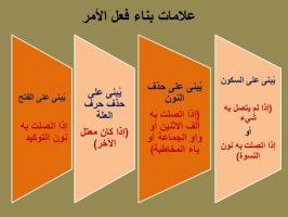 Photo of إعراب فعل الأمر وعلامات بنائه السكون والفتحة حذف النون وحذف حرف العلة