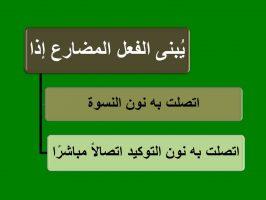 Photo of متى يُبنى الفعل المضارع وما علامات بنائه درس سهل جدًا