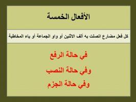 Photo of إعراب الأفعال الخمسة بالتفصيل في حالات الرفع والنصب والجزم